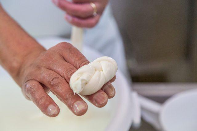 Lavorazione della Mozzarella
